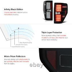 Pour 09-14 Ford F150 Raptor Style Noir Led Neon Tube Tail Lumières Lampe Pair Nouveau